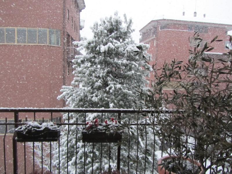 La neve a Precotto