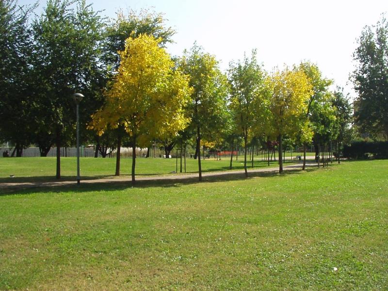 Giardini via Anassagora
